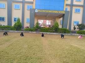 Raj school