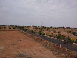 Open plot for sale at IIT Kandi