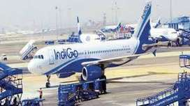 Airlines Job/Indigo Airlines Opened @ CCE , Cabin Crew, Luggage Dept.