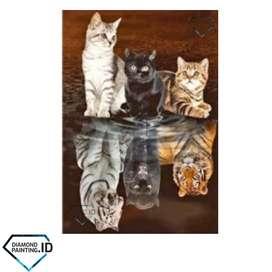 5D DIY Full Drill Diamond Painting Cat 50x40cm