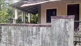 Mannathu Kavu Palakkad