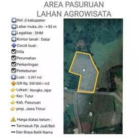 Lahan wisata edukasi perkebunan di Nongkojajar, Kabupaten Pasuruan