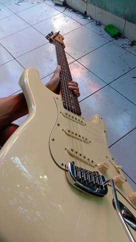 Fender strato casyer