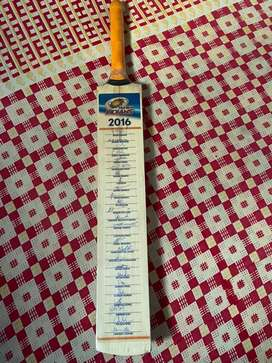 Cricket Bat - Autograph by (26) MI 2016 players