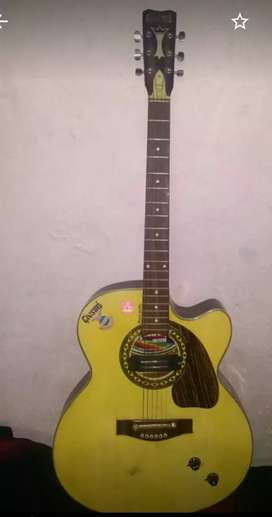 Music instruments gitar
