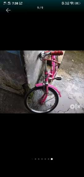 Brand new cycle only 1 yr old with age limit of 11-12.