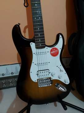 Electric guitar fender