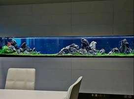Jasa design aquascape termurah