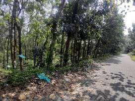 2 ACRE 50 CENT RESIDENTIAL PROPERTY FOR SALE. TAR ROAD FRONTAGE
