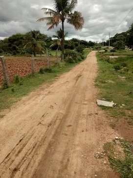 2 Acre land for sale Near  Koratagere  G Nagenahalli