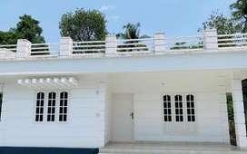 House at Irinjalakuda