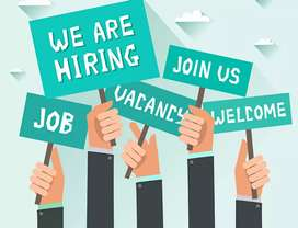 Opportunity For Freshers and job experienced