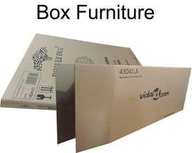 Karton Box Furniture