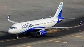 jobs in indigo airlines, Indigo Airlines - Airport Job - Ground Staff