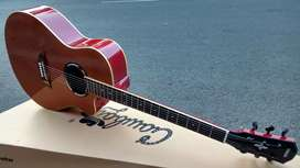 Gitar Akustik dleayer gruver