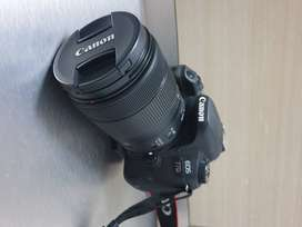 (Only 3 years old) CANON 77D with 18-135 mm lensens