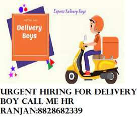 Urgent Hiring for Food and Ecom Delivery boy Job (All Over Pune)