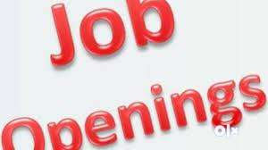 ᑒCandidates freshers-exp reqd for many posts-call now-store jobs 0