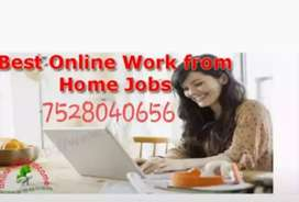 Graduates _ needs a job from home job