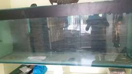 Aquarium sell