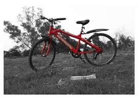 cycle condition are same has photo