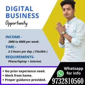 Online digital job
