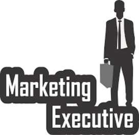 Sales executive field work