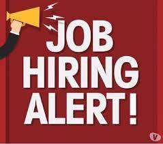 We are Hiring For Hindi Voice Process For BPO