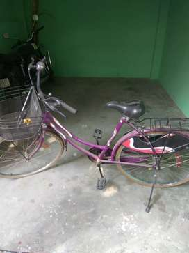 Girls Purple colour cycle