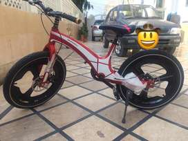 20 inch bicycle with stylish design