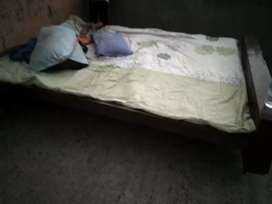 "Bed best he 6.5/5.5""inch"