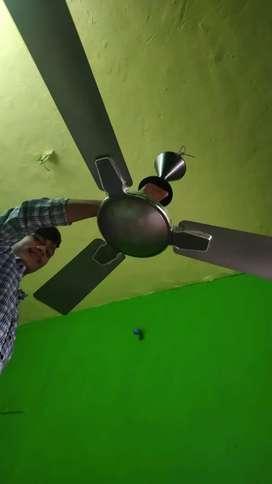 Celling fan (premier)