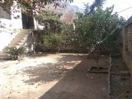 2 houses of 5 Marlas each & plot of 4 marla for sale in Hassan Abdal