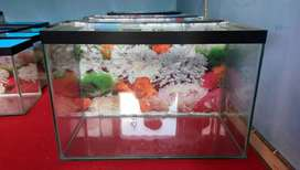 Aquarium ukuran 60x30x40 alas 8mm ddg 5mm