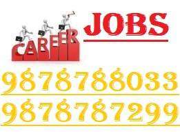 PCD PHARMA STAFF REQUIRED IN TRICITY 98787,88033