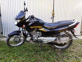 Black Golden Hero Honda Achiever 150cc