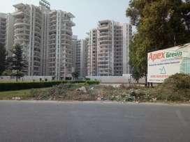 Apex green 3 bhk flat.