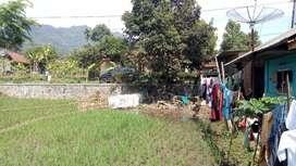 Tanah dan Rumah ada mata air Pinggir Jalan provinsi cocok untuk usaha