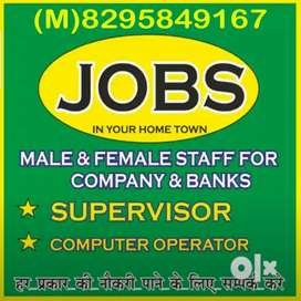Supervisor Driver Guard receptionist diploma holder etc