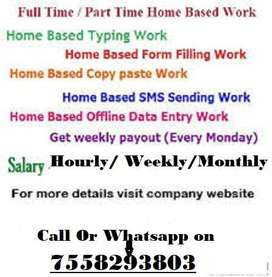 OFFLINE HOME BASE DATA ENTRY TYPING WORK, 24X7 IN YOUR HAND,
