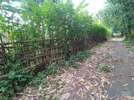 Tanah darat murah di Tigaraksa rancabuaya jambe