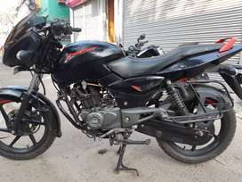 ONLY 11 MONTH OLD BAJAJ PULSAR 150