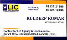 Rural career Agent,City Career Agent