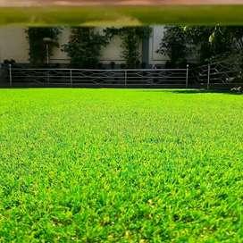 Pemasangan Rumput Taman Sintetis Outdoor
