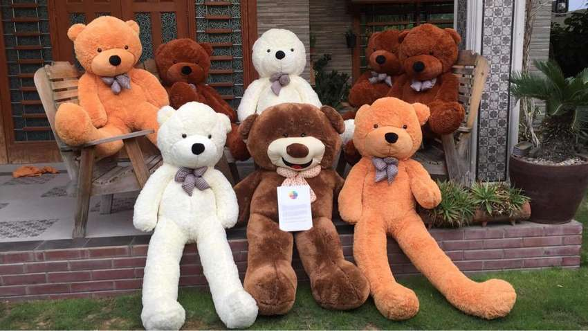Grab your 6ft teddy bear on as lowest prices ever 0