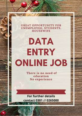 Daily base earnings are provided by us by data entry online job