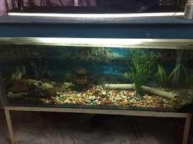 aquarium 48/18 with tv stand