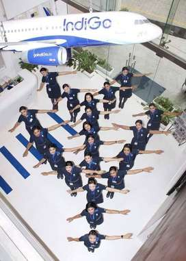 NEW JOBS NOW OPENED IN INDIGO AIRLINES GREAT CHANCE!!  Qualification: