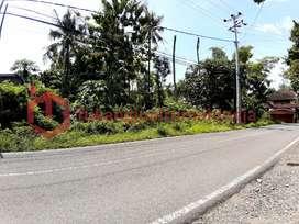 disewakan tanah bagus di Condongcatur