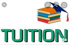 1 to 12 class all subjects home tution available